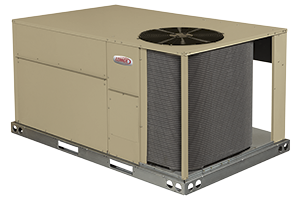 Raider® Rooftop Units (60Hz and 50Hz) Product Image